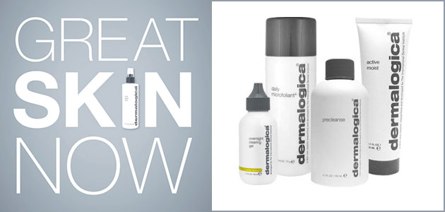Dermalogica Great Skin on Mineral Makeup